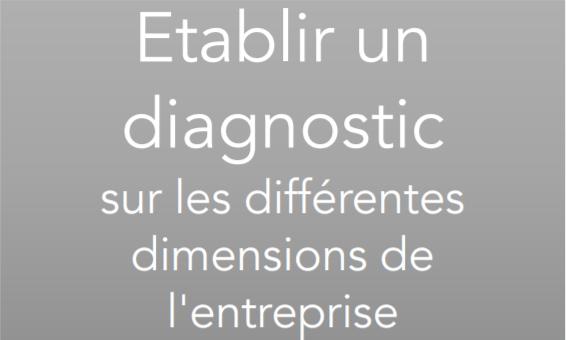 Etablir un diagnostic sur les différentes dimensions de l'entreprise